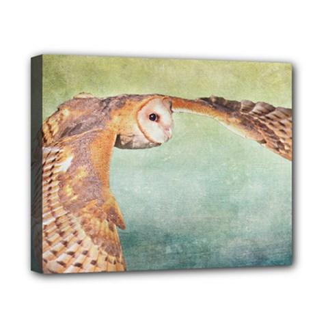 Barn Owl 8  X 10  Framed Canvas Print