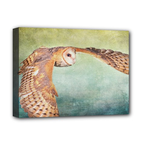 Barn Owl Deluxe Canvas 16  x 12  (Stretched)
