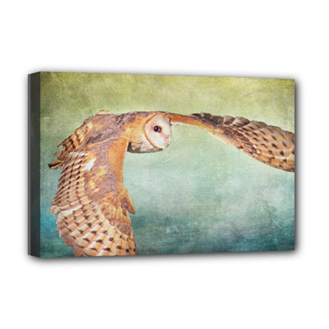 Barn Owl Deluxe Canvas 18  x 12  (Stretched)