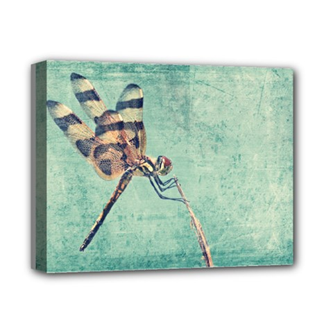 Dragonfly Deluxe Canvas 14  x 11  (Stretched)