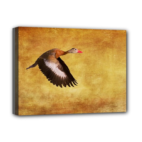 Whistling Duck Deluxe Canvas 16  X 12  (stretched)