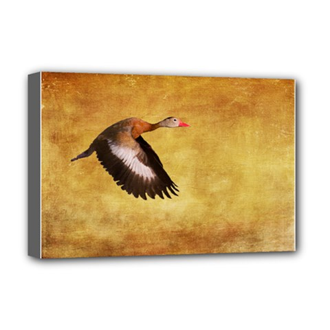 Whistling Duck Deluxe Canvas 18  x 12  (Stretched)