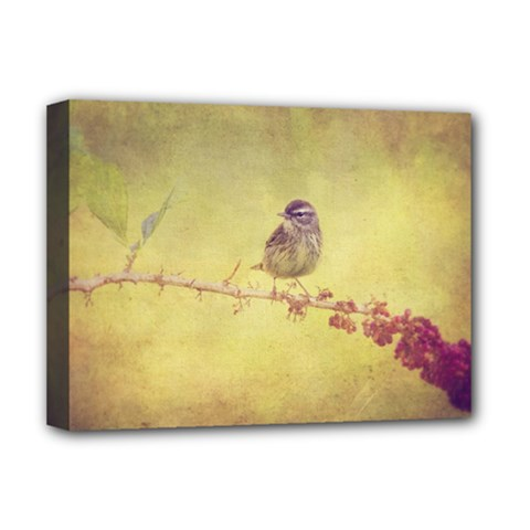 Palm Warbler Deluxe Canvas 16  x 12  (Stretched)