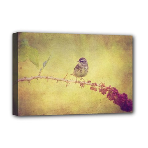 Palm Warbler Deluxe Canvas 18  x 12  (Stretched)