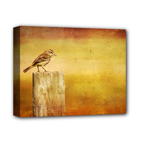 Bird On A Fence Deluxe Canvas 14  x 11  (Stretched)