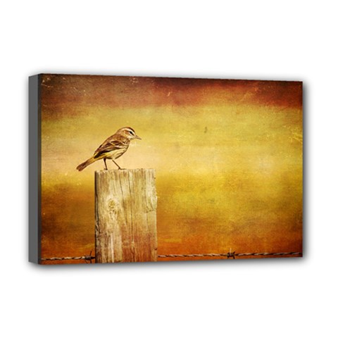 Bird On A Fence Deluxe Canvas 18  x 12  (Stretched)
