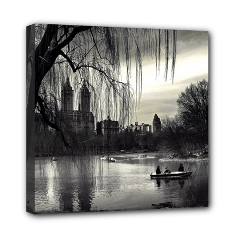 Central Park, New York 8  X 8  Framed Canvas Print