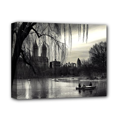 Central Park, New York Deluxe Canvas 14  x 11  (Stretched)