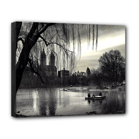 Central Park, New York Deluxe Canvas 20  x 16  (Stretched)