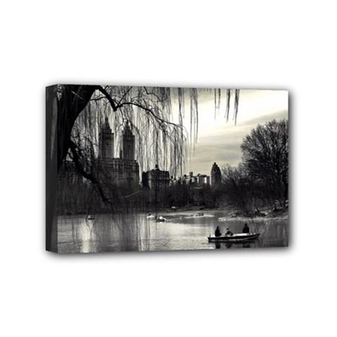 Central Park, New York 4  X 6  Framed Canvas Print