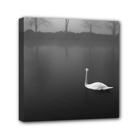 swan 6  x 6  Framed Canvas Print