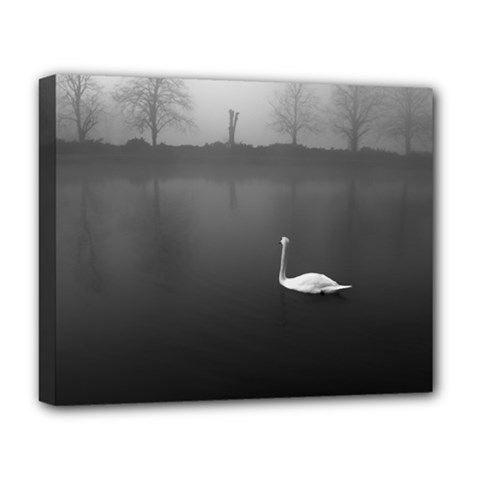 Swan Deluxe Canvas 20  X 16  (stretched)