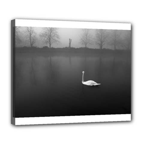 swan Deluxe Canvas 24  x 20  (Stretched)