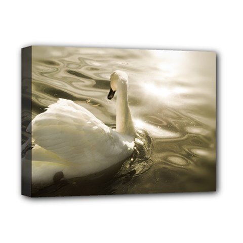 swan Deluxe Canvas 16  x 12  (Stretched)