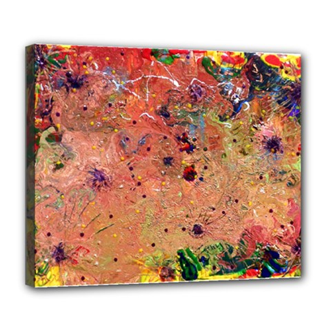 Diversity Deluxe Canvas 24  x 20  (Stretched)