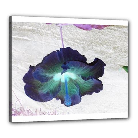 Exotic Hybiscus   20  x 24  Framed Canvas Print