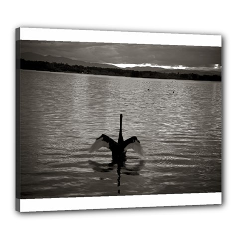 swan, Canberra 20  x 24  Framed Canvas Print