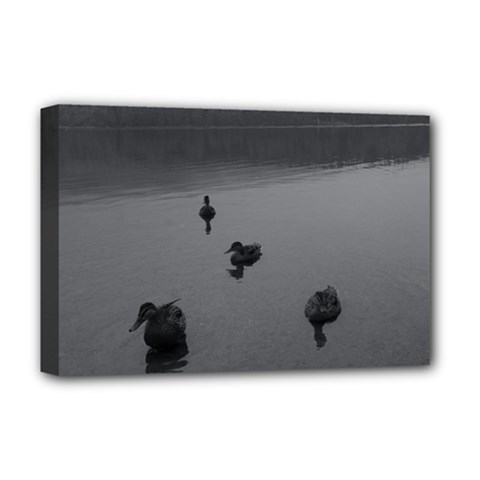ducks Deluxe Canvas 18  x 12  (Stretched)