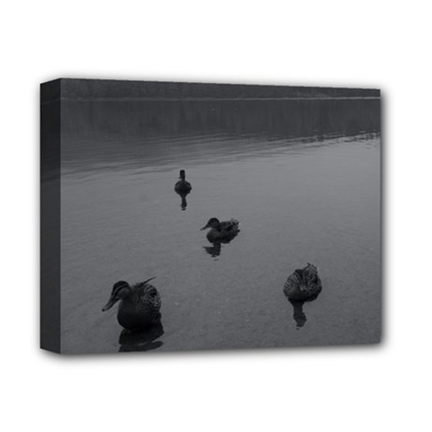 Ducks Deluxe Canvas 14  X 11  (stretched)