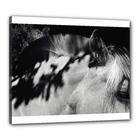 horse 20  x 24  Framed Canvas Print