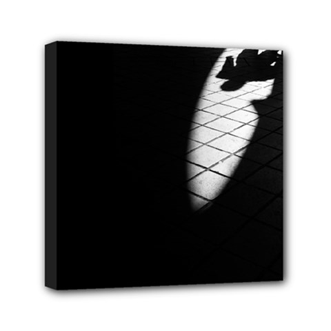 shadows 6  x 6  Framed Canvas Print
