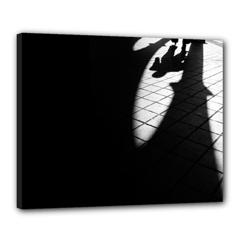 Shadows 16  X 20  Framed Canvas Print