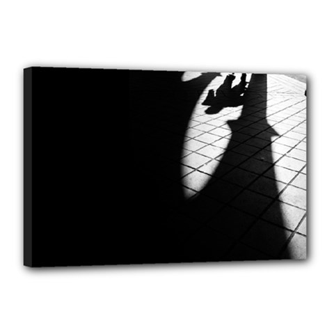 shadows 12  x 18  Framed Canvas Print