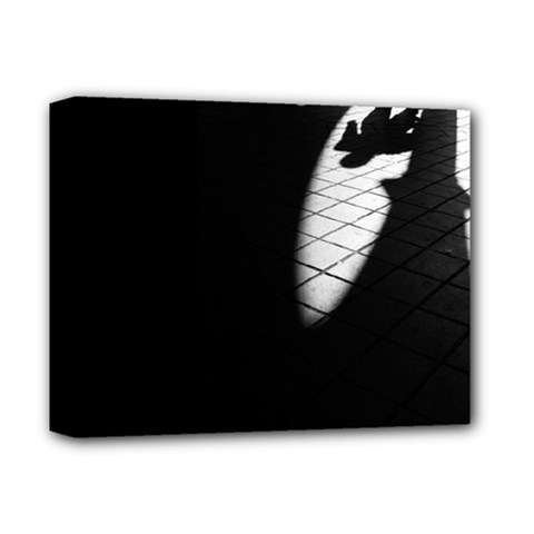 Shadows Deluxe Canvas 14  X 11  (stretched)