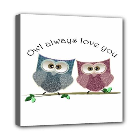 Owl always love you, cute Owls 8  x 8  Framed Canvas Print