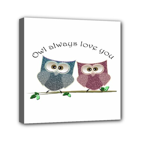 Owl always love you, cute Owls 6  x 6  Framed Canvas Print