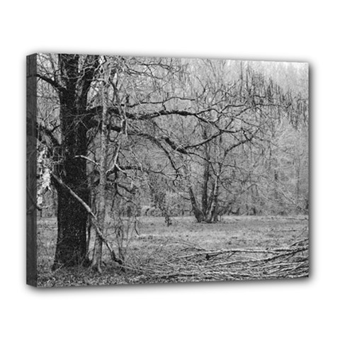 Black and White Forest 11  x 14  Framed Canvas Print