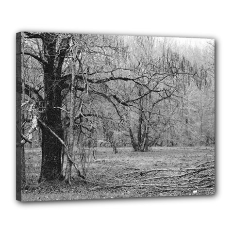 Black and White Forest 16  x 20  Framed Canvas Print