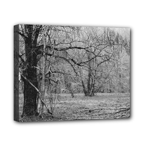 Black And White Forest 8  X 10  Framed Canvas Print