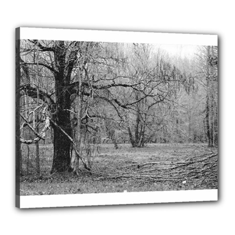 Black And White Forest 20  X 24  Framed Canvas Print