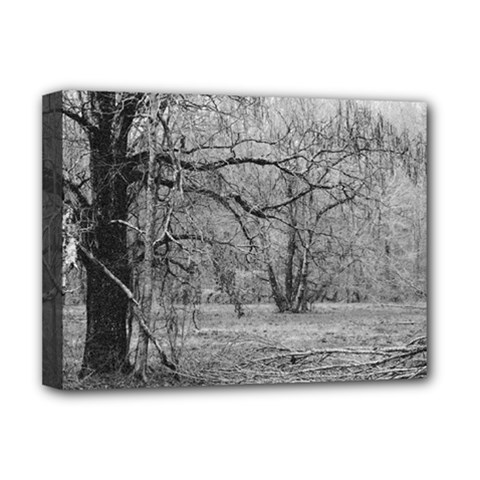 Black and White Forest Deluxe Canvas 16  x 12  (Stretched)