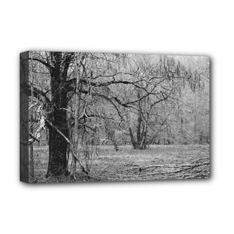 Black And White Forest Deluxe Canvas 18  X 12  (stretched)