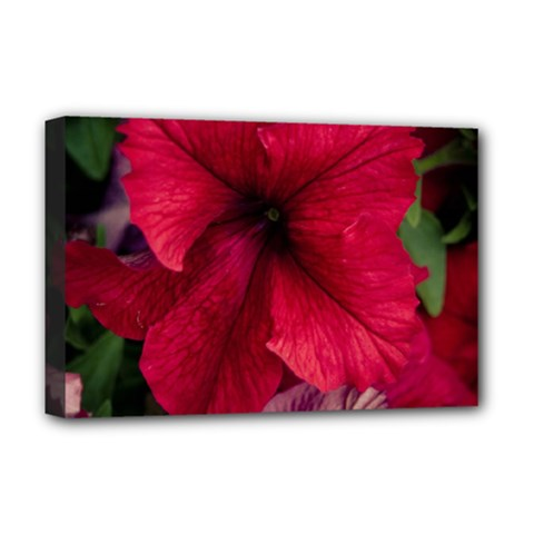 Red Peonies Deluxe Canvas 18  x 12  (Stretched)