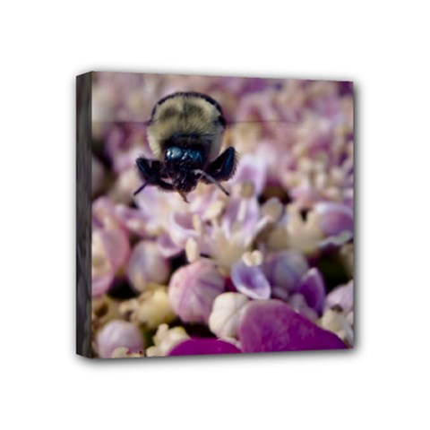 Flying Bumble Bee 4  X 4  Framed Canvas Print