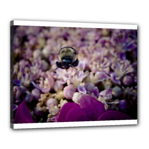 Flying Bumble Bee 16  X 20  Framed Canvas Print