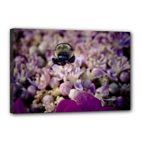 Flying Bumble Bee 12  X 18  Framed Canvas Print
