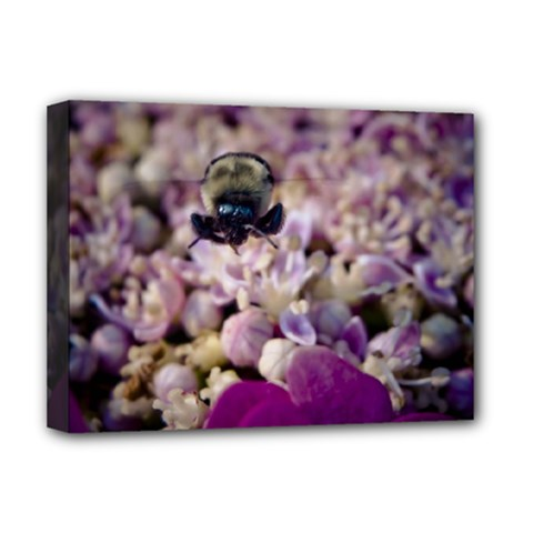 Flying Bumble Bee Deluxe Canvas 16  x 12  (Stretched)