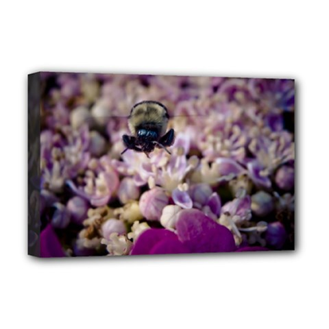Flying Bumble Bee Deluxe Canvas 18  x 12  (Stretched)