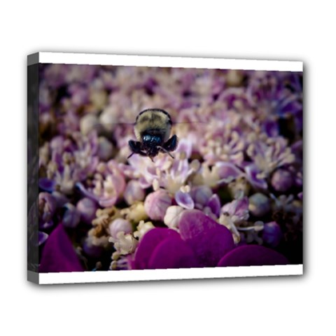Flying Bumble Bee Deluxe Canvas 20  x 16  (Stretched)