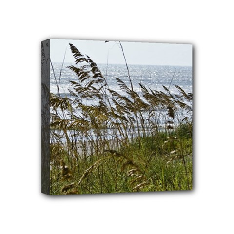 Cocoa Beach, Fl 4  x 4  Framed Canvas Print