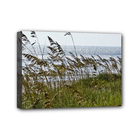 Cocoa Beach, Fl 5  x 7  Framed Canvas Print