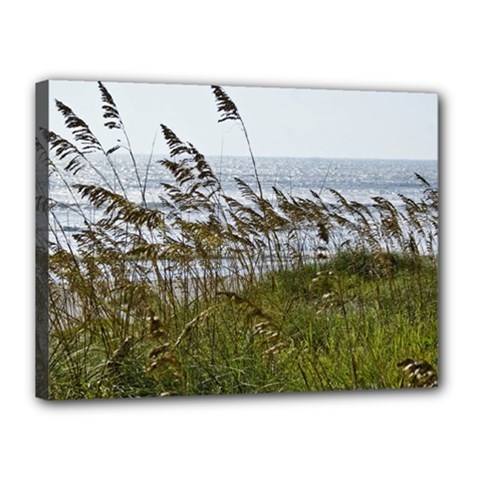 Cocoa Beach, Fl 12  X 16  Framed Canvas Print
