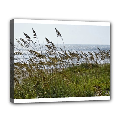 Cocoa Beach, Fl Deluxe Canvas 20  x 16  (Stretched)