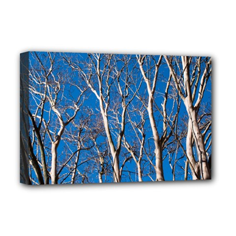 Trees On Blue Sky Deluxe Canvas 18  X 12  (stretched)