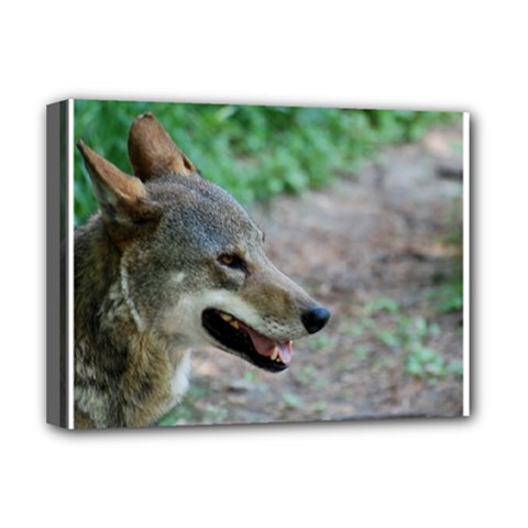 Red Wolf Deluxe Canvas 16  X 12  (framed)