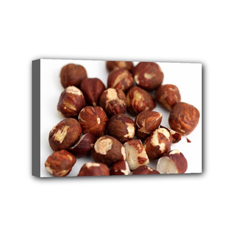 Hazelnuts Mini Canvas 6  x 4  (Framed)